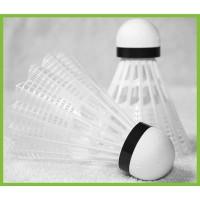 Plastique Compétition